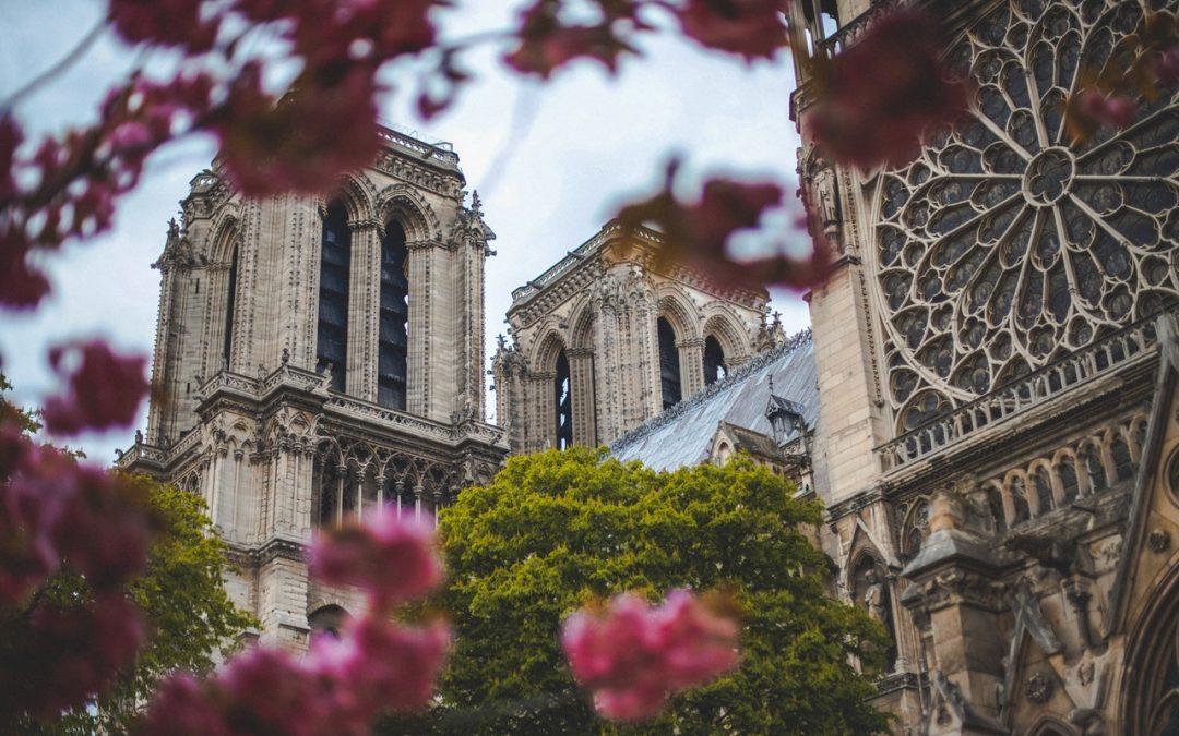 Comment réaliser l'oeuvre alchimique dans une cathédrale ?